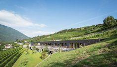 Saisissante maison semi-enterrée fondant dans un paysage viticole en Italie, une -Structure-Slope-par-Bergmeister-Wolf-Architekten #construiretendance