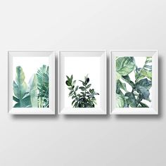 set of 3 prints, botanical illustrations, tropical print - 3 sizes available