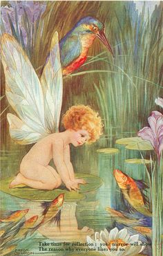 Fred Spurgin postcard. fish and a kingfisher and a fairy. June