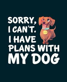 Plans with Dachshund Come First!