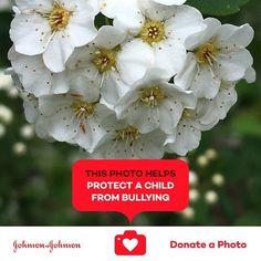 @donateaphoto #donateaphoto #jnj #carewithpride #nobully #careforeachother