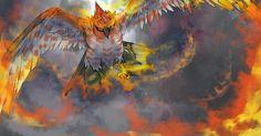 Pokemon X & Y : Flambusard, le plus rapide !   - Pokémon x