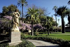 The Mission Gardens is one of the most beautiful spots on campus. The gardens contain olive trees from the late-Mission period, a wisteria arbor, and more than 400 rose bushes.