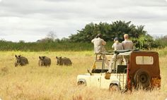 African Game Trek Kenya Budget Camping safari invite and welcome you to take time to discover safaris in Kenya and Tanzania. Visit at www.africangametreksafaris.com
