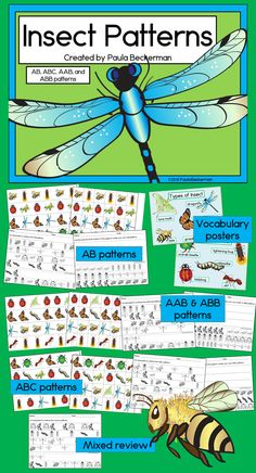 Insect patterning activities with AB, ABC, AAB & ABB patterns.  Gorgeous graphics include ladybug, butterfly, moth, bee, grasshopper, dragonfly, caterpillar, scarab beetle and more.  TpT$