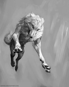 Jump by Kipine dog white wolf monster beast creature animal | Create your own roleplaying game material w/ RPG Bard: www.rpgbard.com | Writing inspiration for Dungeons and Dragons DND D&D Pathfinder PFRPG Warhammer 40k Star Wars Shadowrun Call of Cthulhu Lord of the Rings LoTR + d20 fantasy science fiction scifi horror design | Not Trusty Sword art: click artwork for source