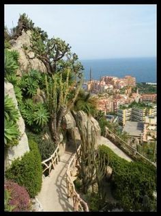 Monaco from a hillside.