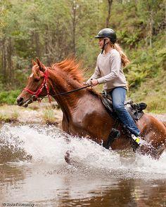 ˚Horseback Riding