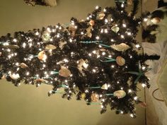 Coastal Christmas tree!!!