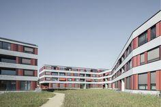 Köschenrüti Housing | ArcDog