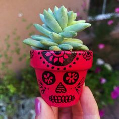 This painted flower pots sugar skull craft is perfect for Dia de los Muertos. The finished flower pots make for beautiful Day of the Dead decor. Fall Flower Pots, Flower Pot Art, Flower Pot Design, Flower Pot Crafts, Clay Pot Crafts, Flower Skull, Sugar Skull Crafts, Sugar Skull Art, Sugar Skulls