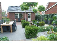 Groenmeesters-Tuin-nieuwbouwwoning,-Sint-Pancras-(Twuyverhoek).jpg (520×390)
