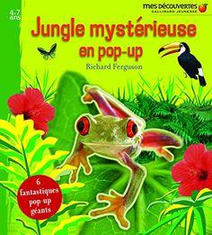 Jungle mystérieuse en pop-up de Richard Ferguson https://www.amazon.fr/dp/2070617270/ref=cm_sw_r_pi_dp_XtFgxb7ZXSJPD