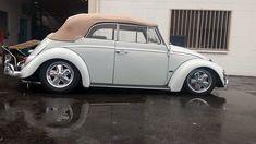 Volkswagen Convertible, Vintage Cars, Antique Cars, Vw Cabriolet, Vw Cc, Bug Car, Vw Beetles, Riverside California, Custom Cars