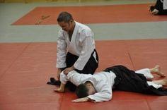 Aikido Kyuprüfungen im Budokan Wels (Oberösterreich) im Dezember 2015 - Gokyo Fixierung