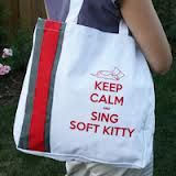 Gotta love Sheldon's Soft Kitty.