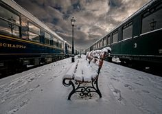 A winter journey on a train  (The Endpoint by Jeannette Oerlemans)