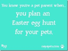 How do you share your Easter celebrations with your pet?