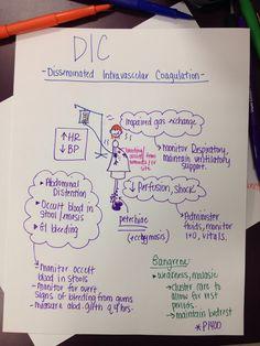 DIC Such pretty notes. Med Surg Nursing, Cardiac Nursing, Nursing Mnemonics, Nursing Career, Nursing Tips, Nursing Programs, Funny Nursing, Study Nursing, Nursing Cheat Sheet
