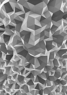 #Polygon, polygon & more polygons! Displacement, Victoria Cartwright.