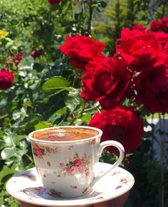 Good Morning Gif, Good Morning Greetings, Greek Language, Flower Aesthetic, Greek Quotes, Coffee Cafe, Mom And Dad, Beautiful Pictures, Beautiful Things