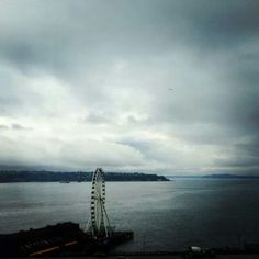 Seattle! I might want to ride this...