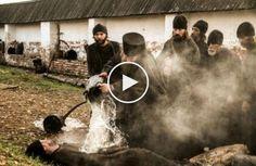 Фильмы онлайн новинки Викинг