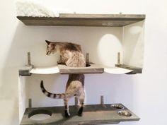3 Level Cat Bunker Cat Hammock Shelves door CatastrophiCreations