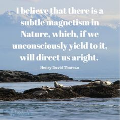 I believe that there is a subtle magnetism in Nature, which, if we unconsciously yield to it, will direct us aright. ~ Henry David Thoreau
