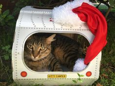 Want a cool holiday gift idea for cats (and their owners)??!! The purr-fect Kitty Camper cat toys for helping make them feline fine! Available on Amazon UK and USA.