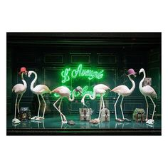 WEBSTA @ gucci - Flamingos in the windows of @galerieslafayette in BoulevardHaussman Paris wear accessories from the…