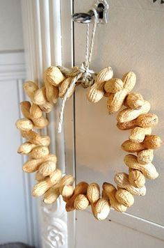 Winter Peanut Feeder Also read article here:  http://www.oakleafgardening.com/blog/miscellaneous/winter-peanut-feeder/
