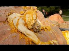 carving biggest pumpkin in NY | ... - Zombies Fight for Freedom in the Haunted Pumpkin Garden (VIDEO
