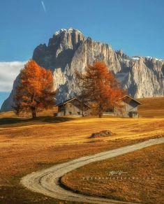 L'automne dans le val Gardena avec le Sassolungo en arrière-plan