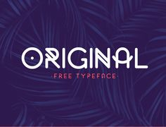 50 Best Free Fonts For 2017 - 41