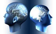 SESTO SENSO? ESISTE DAVVERO MA POCHI LO SANNO! La ghiandola pineale è un meta-organo sensoriale che include i 5 sensi e la menteè sesto senso