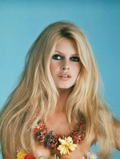 Brigitte Bardot - I gave my beauty and my youth to men. I am going to give my wisdom and experience to animals.