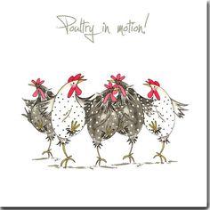 Une illustration amusante de poulets imprimé sur la carte de haute qualité 145x145mm, Emballés individuellement dans un sachet en cellophane avec enveloppe texturée blanche. Vide à lintérieur de votre propre créativité.