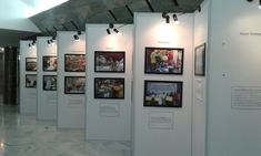 Rak Display, Office Office, Bogor, Surabaya, Jakarta, Photo Booth, Photo Wall, Layout, Asia
