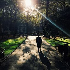 Sunlight shining through the leaves of St. John's Gardens #BurberryWeather 17°C | 62°F