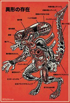 #alien #anatomy #xenomorph