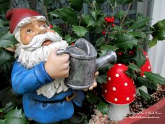 Gnome & Toadstools in the kitchen windowbox (Garden of Len & Barb Rosen) http://ourfairfieldhomeandgarden.com/winter-decorating-at-our-fairfield-home-garden/