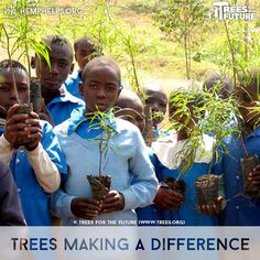 These trees not only help Mother Nature, but also the communities. Trees for the Future plants garden forest throughout the world. The trees themselves provide food, but they also enrich surrounding soil, which can provide additional vegetation. One of the main keys to a sustainable environment is food.