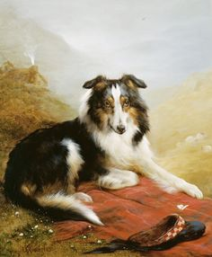 Global Gallery 'A Collie, the Guardian of the Flock' by Edwin Douglas Framed Painting Print Size: Painting Frames, Painting Prints, Fine Art Prints, Rough Collie, Collie Dog, Collie Breeds, Scotch Collie, English Shepherd, Vintage Dog