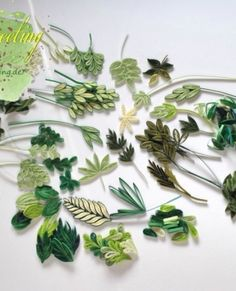 Assorted Leaves - quilled by: Unknown Artist More More