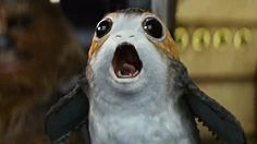 The Baby Porgs From STAR WARS: THE LAST JEDI Have Been Revealed and They Look Freakin' Weird