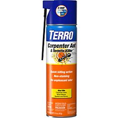 TERRO Carpenter Ant and Termite Killer   Aerosol spray kills carpenter ants, termites, carpenter bees, wood wasps & other insects.  https://www.amazon.com/TERRO-Carpenter-Termite-Killer-Aerosol/dp/B000BPNMGS/ref=cm_cr_arp_d_product_top?ie=UTF8