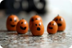 Gnome garden pumpkins--from acorns