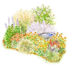 A Late-Summer Wildlife Retreat. Birds and other friendly creatures will find this late-season garden irresistible. The birdbath offers water, while plants such as black-eyed Susan and sedum provide food for both birds and butterflies when many plants are slowing down. Garden size: 16 by 10 feet.