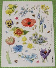 VINTAGE HALLMARK MARJOLEIN BASTIN NATURE'S SKETCHBOOK FLOWERS STICKER SHEET~NEW #Hallmark
